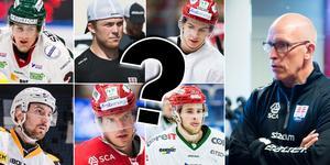 Linus Nässén, Emil Berglund, Christoffer Jansson, Albin Lundin, Morten Madsen, och Tim Wahlgren har alla huvudsakligen spelat center tidigare. Dessutom finns fler spelare i truppen som skulle kunna användas på positionen.