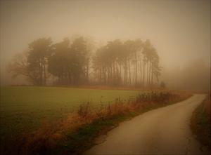 Höstpromenad i dimman. Nog är hösten vacker frågar sig Gunnevi Karlström.