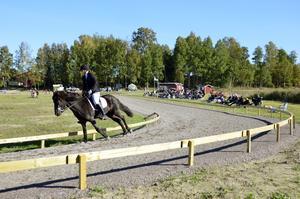 Lag-SM för islandshästar går under helgen av stapeln på Örsta i Kumla.