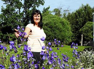 Birgitta Edholm är honungsodlare i Torrom, Noraström. Hon är en av de många väderberoende i Ångermanland – odlare, lantbrukare och andra – som drabbades av den torra och kyliga sommaren.