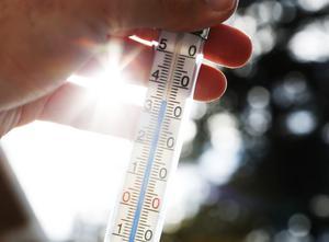 Det är nu dubbelt så stor sannolikhet att vi i Skandinavien ska drabbas av extrema värmeböljor jämfört med om vi inte hade dagens globala uppvärmning.Foto: Erik Johansen / TT