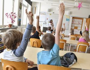I barn- och utbildningsnämndens mål och resursplan, punkt 3.1.2, står att läsa om beräknade riktade statsbidrag för 2019. Har dessa bidrag beviljats? Hur har de i så fall använts? skriver signaturen