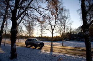 Fáten Nilsson tror inte att förbud för dieselbilar är rätt väg att gå. Bild: Anders Wiklund/TT