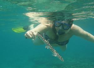 Den här lilla hajen hittade vi sovande på bottnen under en av våra snorkelturer på ön Perhentian i Malaysia.