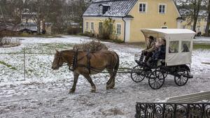 Runt herrgården skjutsade hästen glada besökare.