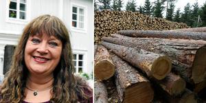 Karin Perers,  Mellanskogs ordförande, efterlyser besked om svensk skogspolitik. Foto: Tobias Ahlén/DT/TT