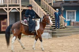 Det blir ingen High Chaparral horse show i år. OBS: Bilden är en arkivbild från High Chaparral.