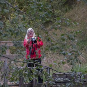 Agneta Sundgren fångar ett motiv genom lövverket