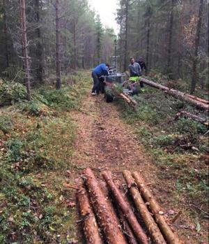Flera partier av skoterlederna har breddats och skoterklubbens medlemmar har röjt skog och gjort markberedningar.