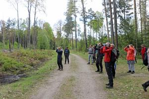 En grupp naturintresserade spejar i Sörbyskogen på den biologiska mångfaldens dag.