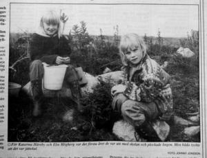 Katarina Häreby och Elin Högberg tyckte att det var jättekul att plocka bär.ST 12 september 1993.