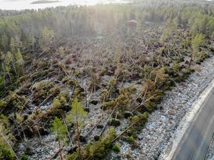 Från ovan syns en del av förödelsen på Rådmansö. Foto: Henrik Ismarker, Spillersboda flygfoto