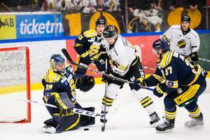 Bild: Andreas Sandström/Bildbyrån