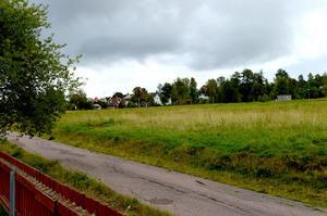 Kan det bli en aktivitetspark på Prästgärdet? Ja, det får Säterborna vänta och se.