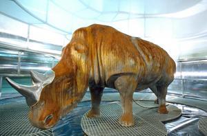 En noshörning korroderar i verket