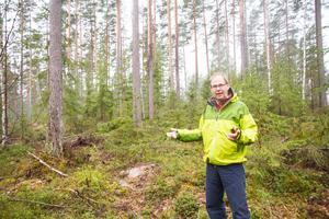 Leif Öster tycker om att visa upp området där han och hans fru Cecilia Öster bedriver ett hyggesfritt projekt. Hittills har över 100 skogsägare besökt platsen för att se hur projektet fortskrider.