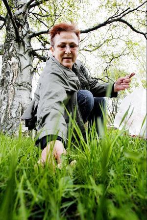 Ewa Andersson kan inte gå förbi svamp utan att plocka den.