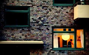 Vänsterpartiet anser att fastighetsägarna har fått för mycket makt.  FOTO: Linda Forsell / SvD / TT