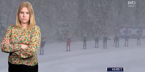 Dagens väder var extremt med så ymnigt snöfall att det tidvis var svårt att urskilja åkarna. Sportens Camilla Westin listar fem punkter från herrarnas masstart i Oberstdorf. Bilden är ett montage.