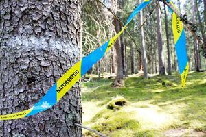 Staten har bestämt att här blir det naturreservat.