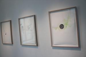 Magdolna Szabó arbetar med spröd färgskala