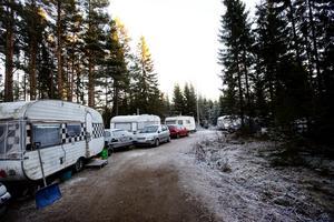 Runt 40 bilar och 12 husvagnar  står uppställda i skogen.