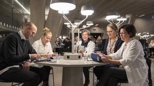 """100 Örebrostudenter deltog i smaktest – åt paj på insektsmjöl och glass på blomkål: """"Ska man stoppa i sig maskmjöl?"""""""