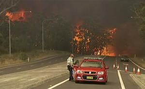Bilden är tagen på nyårsafton på Princes highway i New South Wales.