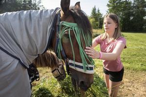 Tilda tillsammans med hästen Bright– ponnyn Cheeta mumsar på hö i bakgrunden.