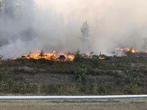 Elden härjar bara meter från vägen.Foto: Kurt Holm/räddningstjänsten