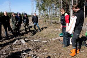 Solbelyst kant av ett hygge. Skogsstyrelsens konsulenter Monica Pettersson och Emil Hjerpe valde en typisk plats där angrepp av granbarkborre är vanliga när de höll infoträff i Vikersvik. Träffen som hölls i samarbete med Moelven Skog var den tolfte av sammanlagt femton i Örebro län och Sörmland under våren.