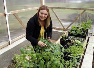 Caroline Lindberg i full gång med odlingarna i sitt nya växthus.