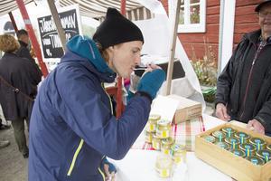 Rickard Frick provar honung från Olav Ohlanders biodling.
