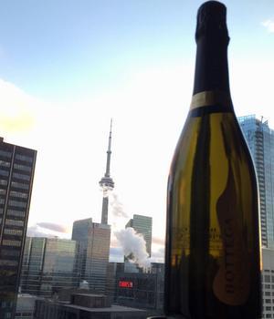 Nyårsafton i Toronto firades med hockey, hockey och hockey. Och så lite alkoholfri skumpa på det.