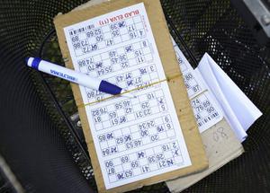 En jubilar. Bingospelet i Sverige firar 50 år i september. Ett slumpspel i många former som blivit riktigt populärt.
