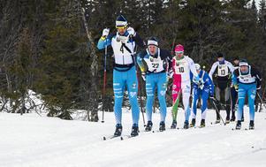 Tätklungan en bit från starten på Fjällsikten. Längst fram Patrik Tallbom, Östersunds SK. Efter honom  klubbkompisen och slutsegraren Emil Persson samt Robin Bryntesson, Sockertoppen.