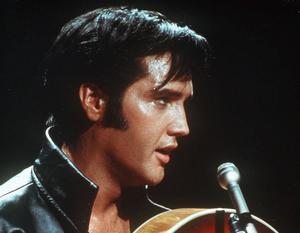 Elvis hyllas i showen