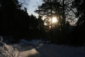 Solen tittar fram en morgon. Foto: Ralph Welin
