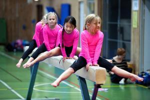 Klubben har under de senaste åren tagit upp den artistiska gymnastiken som är ungefär som den klassiska individuella tävlingsgymnastiken med redskap som barr, bom, matta och hopp.