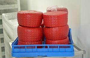 Murboannas Ost utökar sortimentet och producerar nu också hårdostar.