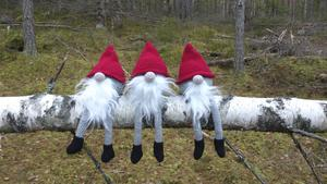 Här sitter vi och väntar på julesnö!