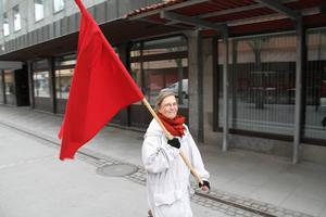 V-ordförande Lillemor Mauritzdotter Nylén, gick till attack mot S: