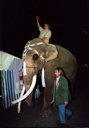 1996 gjorde Ljusberg entré på ryggen på en elefant.