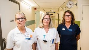 Jana Stenås,  Jorun Åkerblom och Marie Malm har erfarenhet från många år i yrket. Alla är överens om att det blivit tuffare.