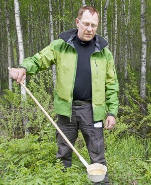 Jan Lundström kontrollerar antalet mygglarver i ett översvämmat område vid nedre Dalälven.