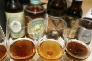 Stor variation. Stor stark-eran är lyckligtvis på väg mot sitt slut. Nu väljer många öl efter smakkaraktär på samma sätt som vin. Bland februarinyheterna finns flera intressanta, goda och personliga sorter att botanisera bland.