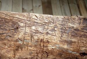 Vilka redskap och hur många användes när Fiskebybåten tillverkades för 2500 år sedan? Frågorna är fler än svaren när Norrlands äldsta båtfynd visas upp.