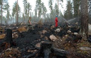 Brandmännen från Gällivare, Peter Hämén och Tage Larsson, placerade ut sprinklers i skogen för att elden inte skulle blossa upp igen.Foto: Alf Lindbergh / SCANPIX.