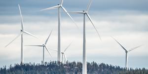 Bild på Björkhöjdens vindkraftpark som ligger i närheten.