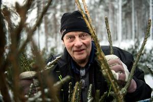Per-Olov Westberg i Sörbacksjö har sålt julgranar i snart 30 år.